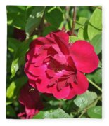 Rose On The Vine Fleece Blanket