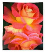Roses Of Many Colors Fleece Blanket