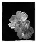 Roses On Black Fleece Blanket