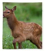 Rosie Elk Youngin Fleece Blanket