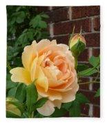 Rosy Sunshine Fleece Blanket