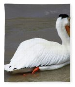Rough Billed Pelican Fleece Blanket