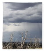 Rough Skys Over Colorado Plateau Fleece Blanket