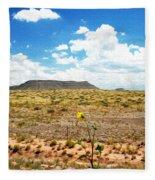 Route 66 Arizona Fleece Blanket
