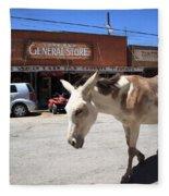 Route 66 - Oatman Arizona Fleece Blanket