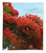Royal Poinciana Branch Fleece Blanket