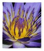 Royal Purple Water Lily #5 Fleece Blanket