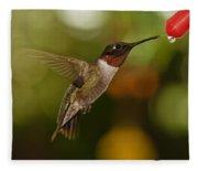 Ruby-throat Hummingbird Fleece Blanket