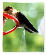 Ruby-throated Hummingbird Pooping Fleece Blanket