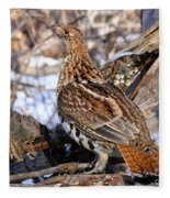 Ruffed Grouse On Alert Fleece Blanket
