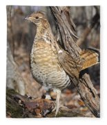 Ruffed Grouse On Mossy Log Fleece Blanket