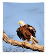 Ruffled Feathers Fleece Blanket