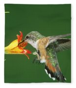 Rufous Hummingbird At Tiger Lily Fleece Blanket