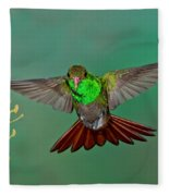 Rufous-tailed Hummer Fleece Blanket