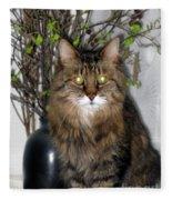 Runcius- Palm Sunday Kitty Fleece Blanket