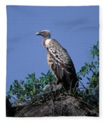 Ruppells Griffon Vulture Fleece Blanket