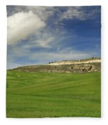 Rural Beauty At Andalusia Fleece Blanket