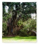 Ruskin Oak - Ocean Springs Fleece Blanket