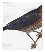 Rusty Blackbird  Fleece Blanket