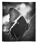 Rusty Tip Butterfly Black And White Fleece Blanket