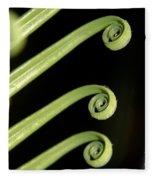 Sago Palm Leaf - 1 Fleece Blanket