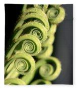 Sago Palm Leaf - 3 Fleece Blanket