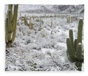 Saguaro Cacti After Rare Desert Fleece Blanket