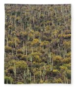 Saguaro Forest At The Foot Of Four Peaks Fleece Blanket