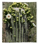 Saguaro In Bloom Fleece Blanket