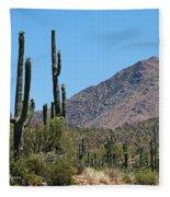 Saguaros And Mountain Fleece Blanket