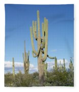 Saguaros With Green Grass Fleece Blanket
