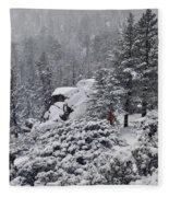 San Jacinto December Wilderness Fleece Blanket