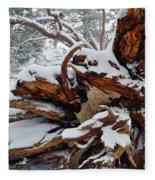San Jacinto Fallen Tree Fleece Blanket