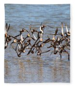 Sand Pipers Arrive At The Grp Fleece Blanket