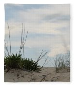 Delaware Sand Dune Fleece Blanket