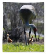 Sandhill Chicks Under Foot Fleece Blanket