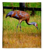 Sandhill Crane Fleece Blanket
