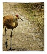Sandhill Crane On The Road Fleece Blanket
