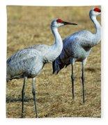 Sandhill Crane Pair Fleece Blanket
