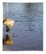 Sandhill Crane Vs Alligator Fleece Blanket