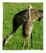 Sandhill Crane With Chick II Fleece Blanket