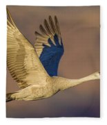 Sandhill Crane Young Adult Fleece Blanket