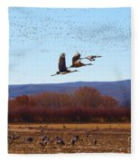 Sandhill Cranes 6 Fleece Blanket