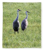 Sandhill Cranes In Wisconsin Fleece Blanket