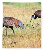 Sandhill Cranes Ll Fleece Blanket