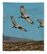 Sandhill Cranes Over Chupadera Mountains Fleece Blanket