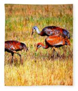Sandhill Family Fleece Blanket