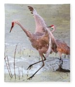 Sandhill Leap Of Faith Fleece Blanket