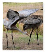 Sandhill Stretch Fleece Blanket