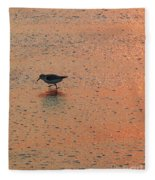 Sandpiper On Shoreline Fleece Blanket